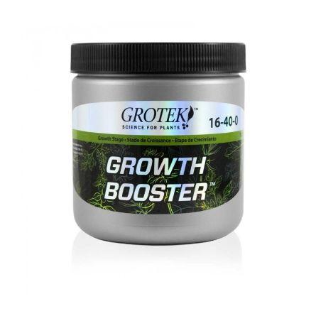 GROWTH BOOSTER 20Gr Grotek